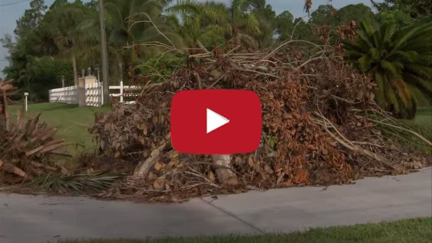 Yard Waste Video Still